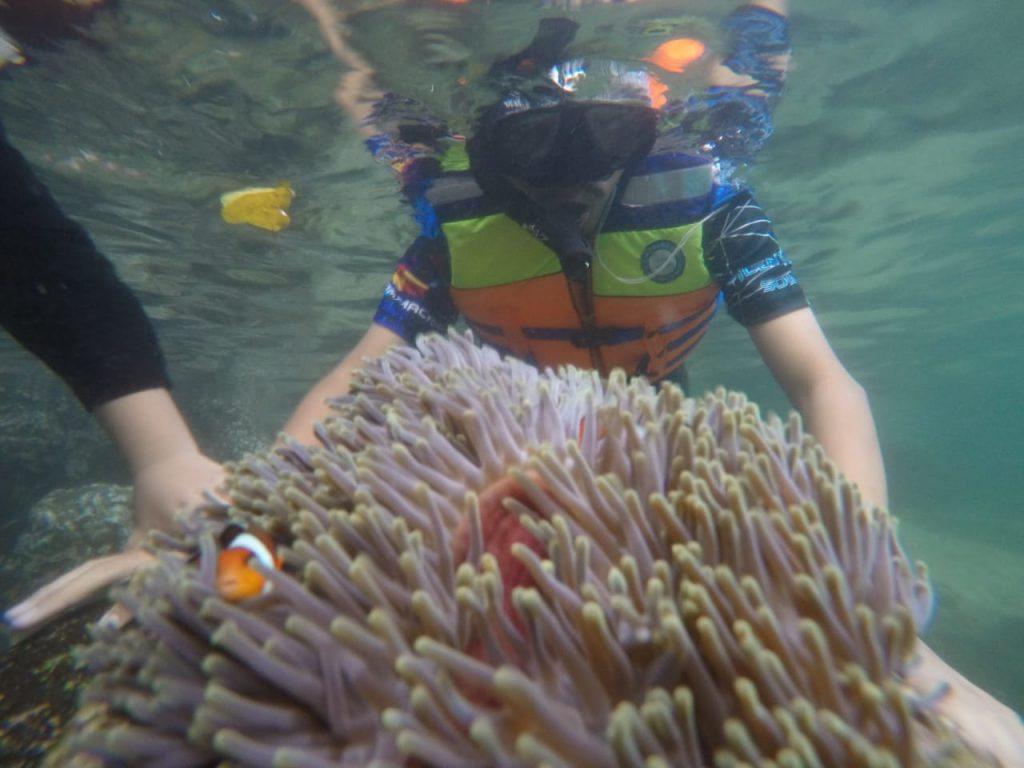 pakej percutian ke pulau weh aceh